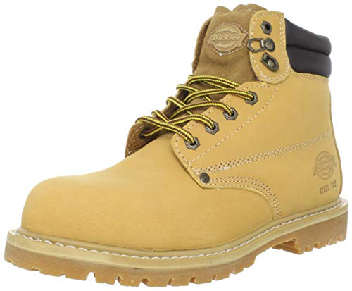 Dickies Men's Raider Steel-Toe Work Shoe