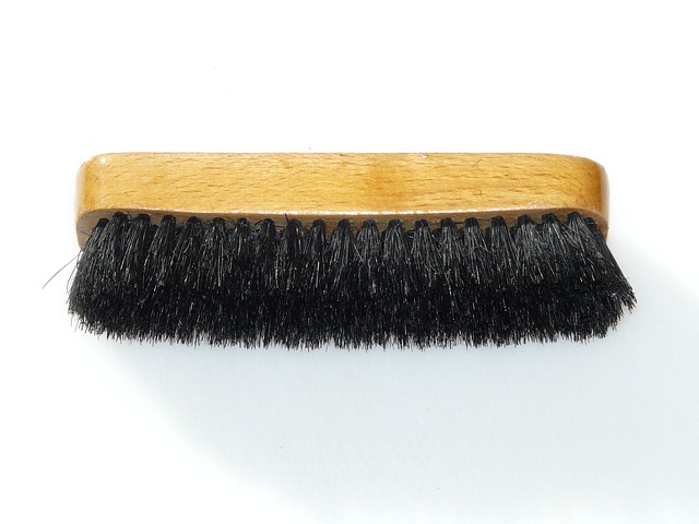 a horsehair shoe brush